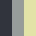 In ce culori ne decoram casa in 2011
